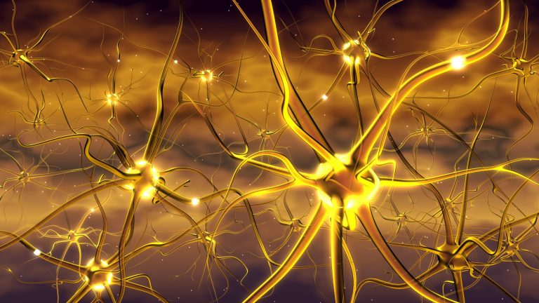Nervous system without Peripheral Neuropathy